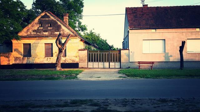 Village street (Vojvodina)